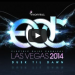 Electric Daisy Carnival Las Vegas 2014 Celebrate Art, Love and Life