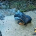 Man Survives Lightning Strike That Knocks Him Out of His Boots