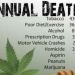 New Study Shows Marijuana Is 114 Times Safer Than The Deadliest Drug In The U.S.