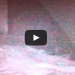 Alien Abduction Caught On Camera In Woman's Bedroom As She Sleeps