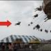 Graphic– Woman Flies Off Amusement Park Swing
