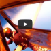 [GoPro] INSANE FOOTAGE: Skydivers Land Safely After Plane Crash