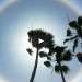 See What Happens When A Woman Calls 911 Mistaking A 'Sun Halo' For UFO