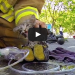 GoPro Captures Fireman Rescuing Unconscious Kitten From Burning House