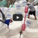 [VIDEO] The Ultimate Bubble Wrap Battle – Gladiator Style