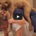 This Married Couple And Their Dog Are The Ultimate Team!