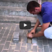 He Heard A Noise Underneath The Brick Sidewalk, What He Found Was A Miracle!