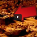 Strange Spider Creature Photographed On Mars – Alien Life Form Caught On Film