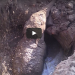 You'll Be Heartbroken When You See Why This Elephant Spent 11 Hours Digging A Hole