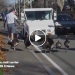 5 Turkeys Bully This Mailman Every Day, His Response? Hilarious!!