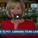 CNN Reporter Gets Contact High Live On Air While Covering A 'Colorado Pot' Story