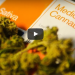 How To Get Weed In 5 Minutes Without Leaving Your Couch