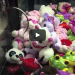 Kicked Out Of Walmart For Winning Too Much On The Claw Machine