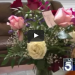 Husband Arranges For Widow To Get Flowers Every Valentine's Day Until She Dies
