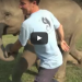 See What Happens When This Elephant Spots Her Favorite Human!