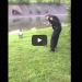 Mama Goose Asks Cop To Help Her Baby Who Was In Trouble