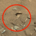 'Thigh Bone' Found On Mars, Photos Captured By New Curiosity Rover