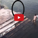 Watch as Ghost Playfully Jumps In To Pond With Other Kids