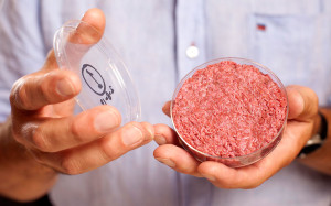 McDonald's Uses Worm Meat Fillers But Can Legally Call It 100% Beef