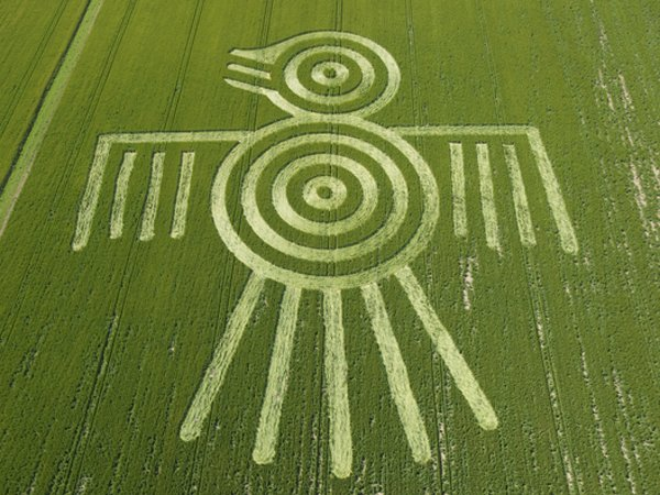 Crop-circle_photo17_wonderstoday_com