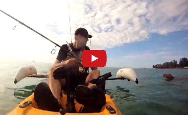 man saves drowning dog
