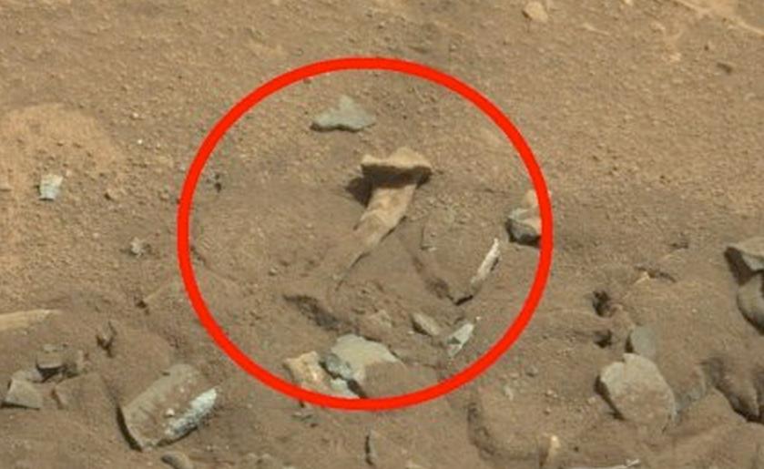 nasa rover camera live - photo #17