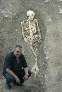 mermaid body found in caribbean