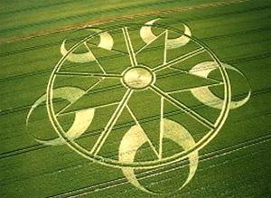 crop-circle-13