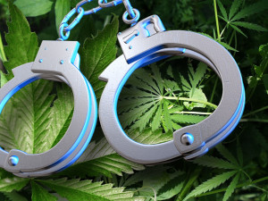 marijuana-handcuffs-hbtv-hemp-beach-tv
