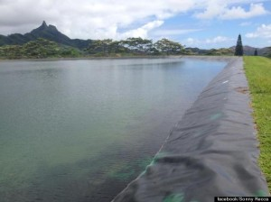 o-WAIMANALO-RESERVOIR-FULL-570