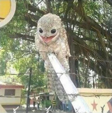 prehistoric owl