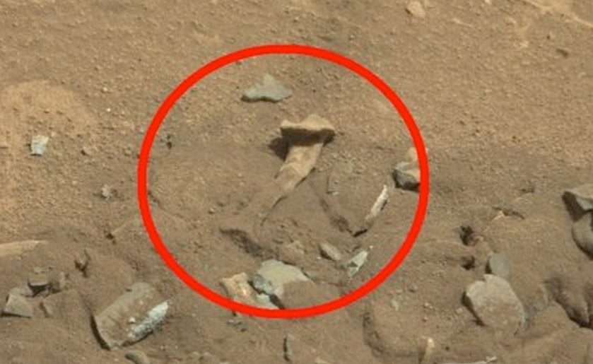 mars rover curiosity live camera - photo #38